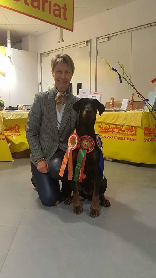 International Dogshow Malmø, Sweden