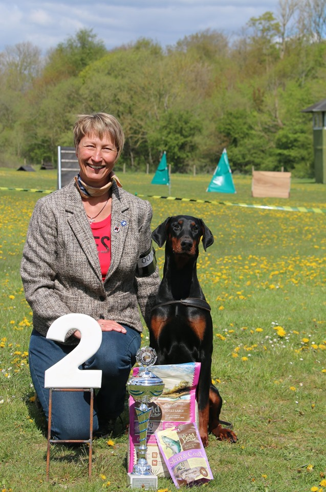 Danish Dobermann Junior Winner 2019
