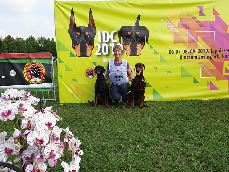 Grusholm brought 3 dogs to IDC – Hungary 2019 and the 2 came in the final.