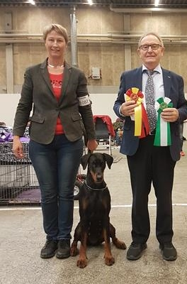 Great results from Herning International Dogshow