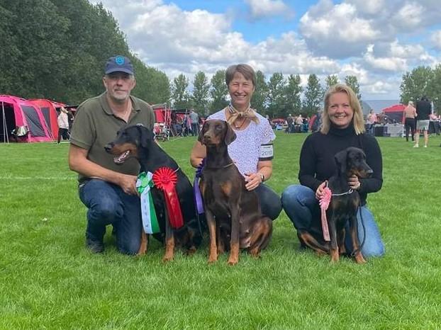 DKK international dog show in Ballerup